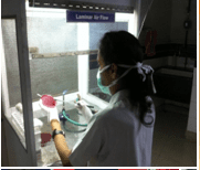 its dental college research fields Microbiology